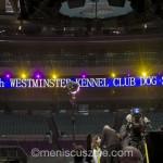 westminist_01_dxo