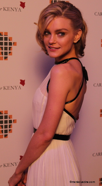 Jessica Stam - 2014 Building Blocks for Change - Care for Kenya Winter Ball