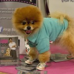PetFashion_020714_0002