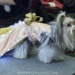 PetFashion_020714_0013