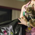 PetFashion_020714_0015