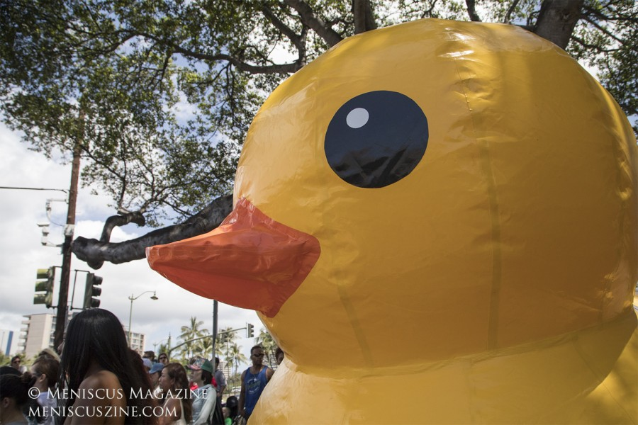 The giant inflated duckie's name is Ucpah. (photo by Kwai Chan / Meniscus Magazine)
